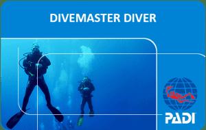 PADI Divemaster course ***