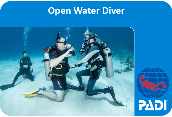 PADI (Junior) Open Water Diver course ***